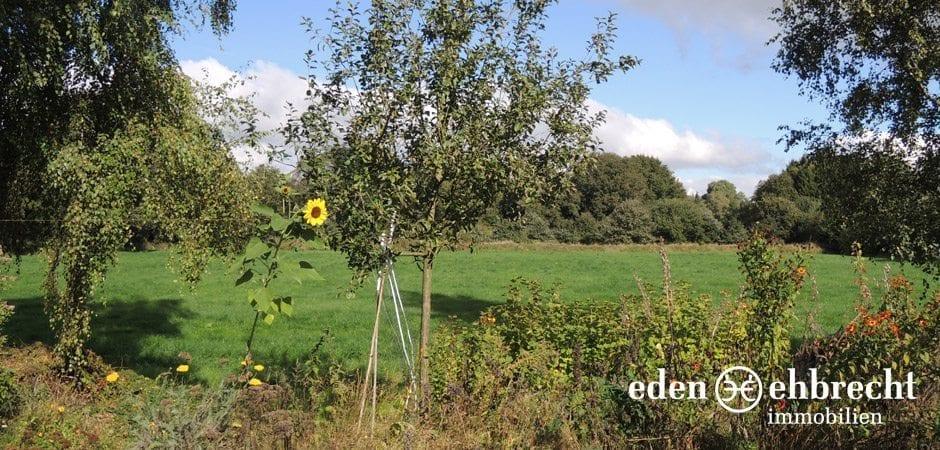 https://eden-ehbrecht-immobilien.de/wp-content/uploads/2013/12/Bürgerbuschweg_aussicht-grünflächen.jpg